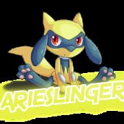 ArieSlinger